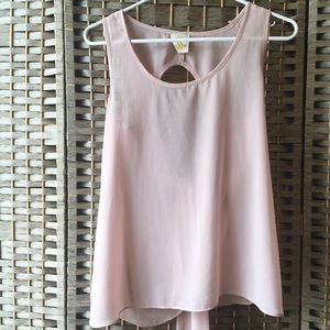 Light Pink Cut Out Sheer Summer Top - Ties in Back